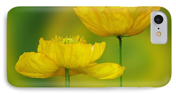Yellow Poppies IPhone Case
