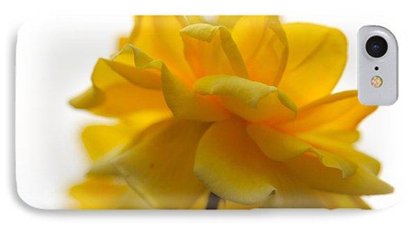 Yellow Rose Garden IPhone Case