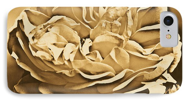 Yellow Rose Of Texas Floral Decor Square Format Rustic Digital Art IPhone Case