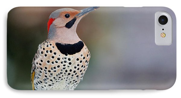 Yellow Shafted Flicker In Snow IPhone Case
