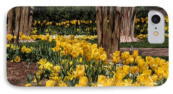 Yellow Tulip Pathway IPhone Case