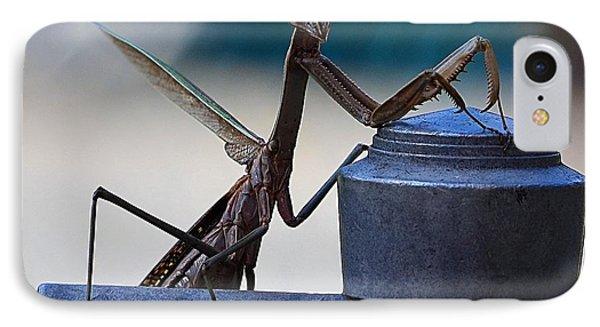 You Looking At Me - Pray Mantis IPhone Case