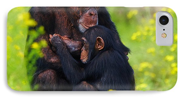 Young Chimpanzee With Adult - II IPhone Case