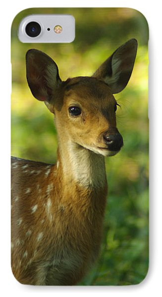 Young Spotted Deer IPhone Case