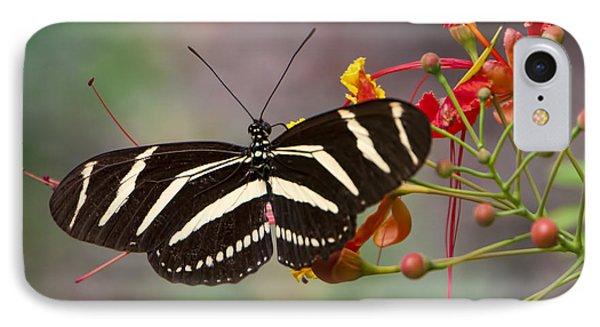 Zebra Longwing Butterfly IPhone Case