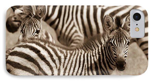 Zebra Stripes Galore IPhone Case