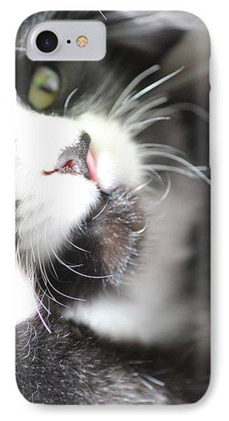 Cat Moment IPhone Case