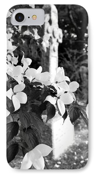 Dogwood In Cemetery IPhone Case