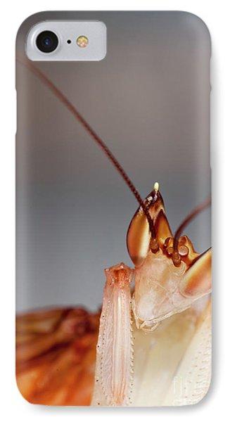 Orchid Praying Mantis IPhone Case