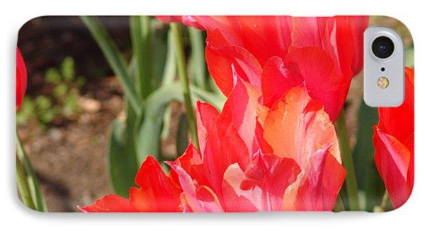Praying Tulips IPhone Case