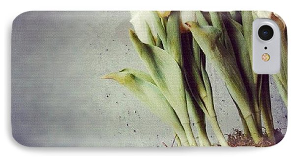 White Tulips In Bowl - Gray Concrete Wall IPhone Case