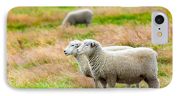 Sheep iPhone 8 Case - Sheeps by MotHaiBaPhoto Prints