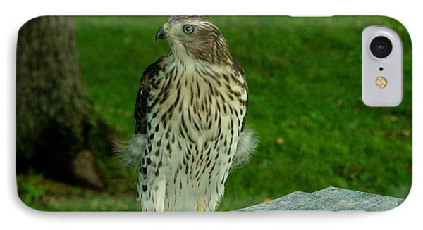 A Day At Work IPhone Case