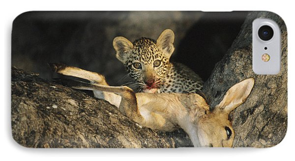 Republic Of South Africa iPhone 8 Case - A Leopard Cub Gets A Taste by Kim Wolhuter