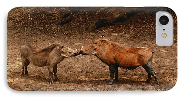Republic Of South Africa iPhone 8 Case - A Male And Female Warthog Kiss Noses by Nicole Duplaix