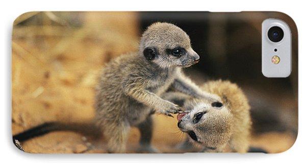 Republic Of South Africa iPhone 8 Case - A Pair Of Four-week-old Meerkat Pups by Mattias Klum