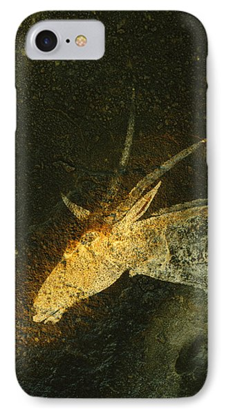 Republic Of South Africa iPhone 8 Case - A San Mural Painting Of An Eland, An by Kenneth Garrett