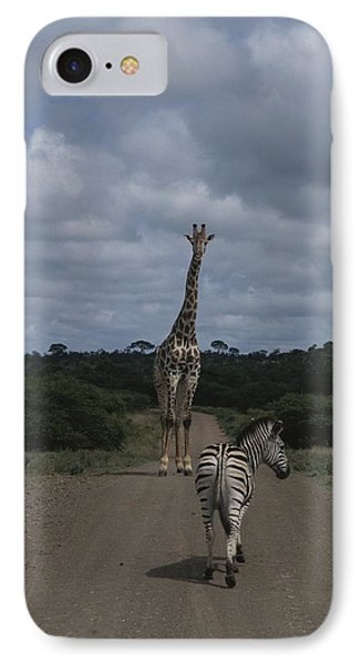 Republic Of South Africa iPhone 8 Case - A Zebra And Giraffe Walk Down A Dirt by Stacy Gold