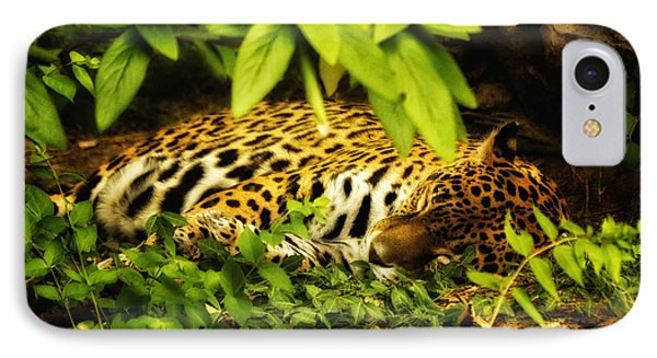Amur Tiger IPhone Case