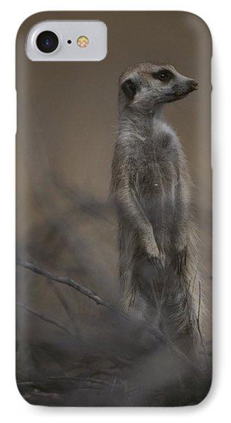 Republic Of South Africa iPhone 8 Case - An Adult Meerkat Suricata Suricatta by Mattias Klum