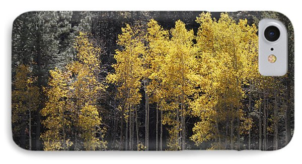 Aspen Gold IPhone Case