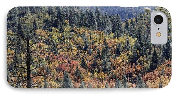 Autumns Palette IPhone Case