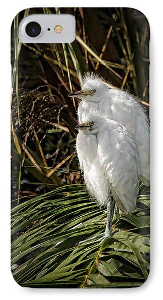 Baby Egrets IPhone Case