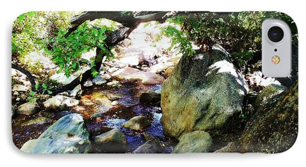 Bear Creek Branch IPhone Case