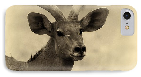 Beautiful Nyala IPhone Case