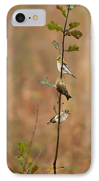 Bird Stack IPhone Case