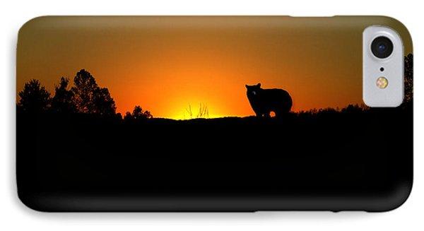 Black Bear Sunset IPhone Case