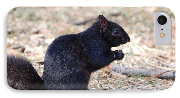 Black Squirrel Of Central Park IPhone Case