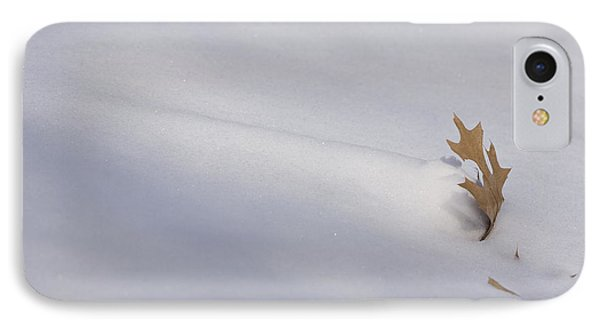 Blown Snow And Oak Leaf IPhone Case