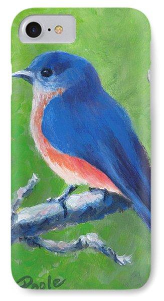 Bluebird In Spring IPhone Case