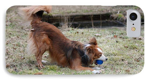 Border Collie Playing With Ball IPhone Case