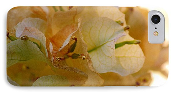 Bougainvillea Memory IPhone Case