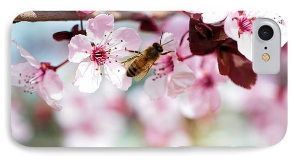 Busy Buzzing Around These Beautiful Blooms... IPhone Case