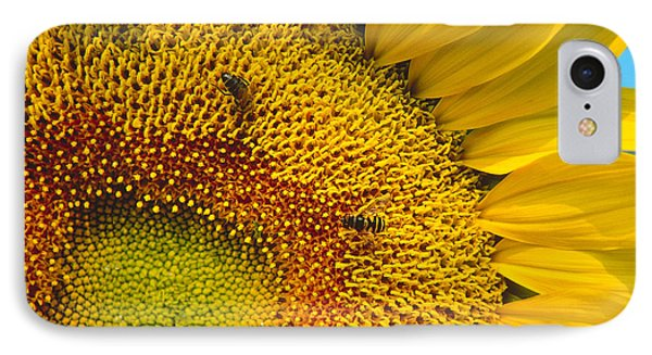 Busy Sunflower IPhone Case