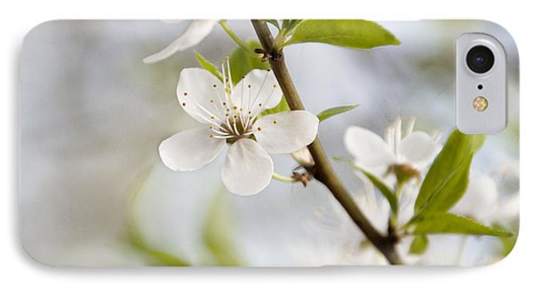 Cherry Tree Blossom IPhone Case