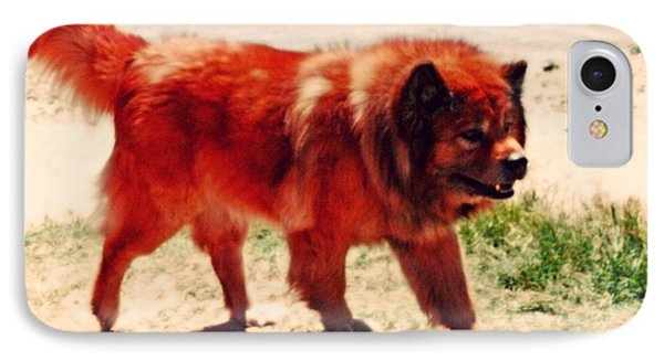 Chow Chow IPhone Case