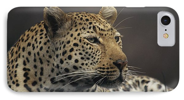 Republic Of South Africa iPhone 8 Case - Close View Of A Leopard Panthera Pardus by Kim Wolhuter