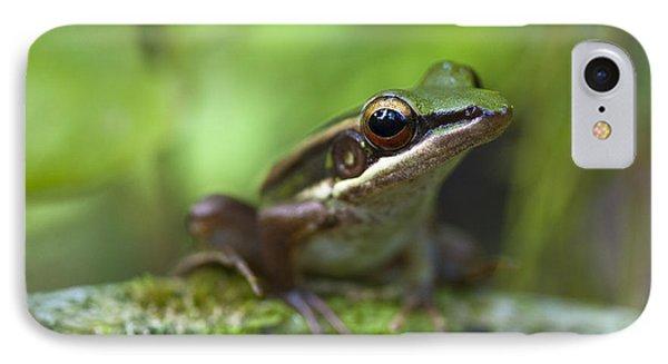 Common Greenback Frog II IPhone Case