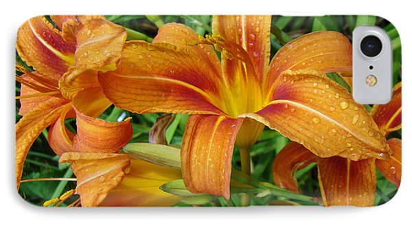 iPhone 8 Case - Consider The Lilies Of  The Field - Hemerocallis Fulva by Mother Nature