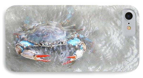 Crab Shack IPhone Case