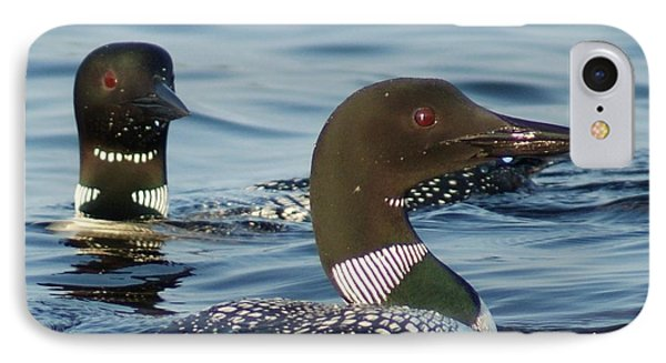 Curious Loons IPhone Case