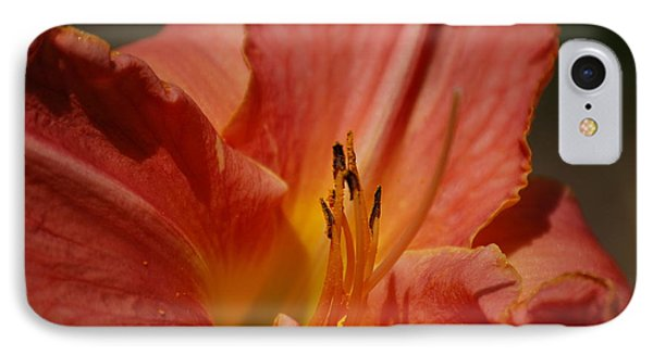 Daylilly IPhone Case
