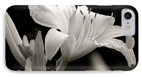 Daylily Study In Bw Iv IPhone Case