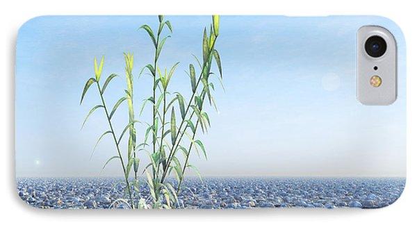 Desert Plant, Artwork IPhone Case