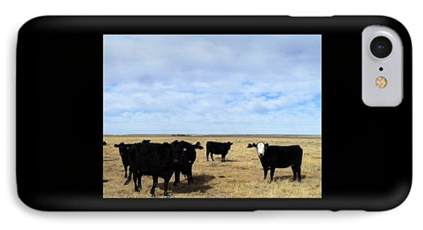 Farm Friends IPhone Case