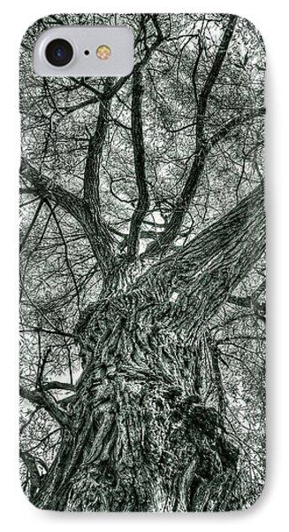 Finkles Landing Tree IPhone Case